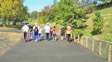 日野町 スポーツ天国 大谷公園